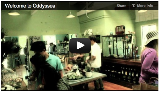 Welcome to Oddyssea Video