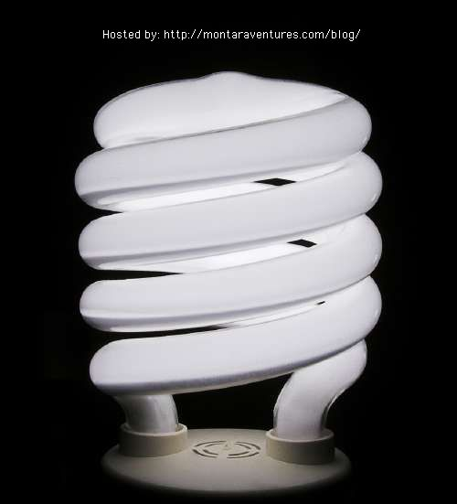 Compact fluorescent light bulb that earned me $516 per year, or $3,612 over the next seven years.